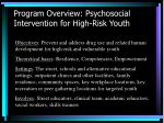 program overview psychosocial intervention for high risk youth