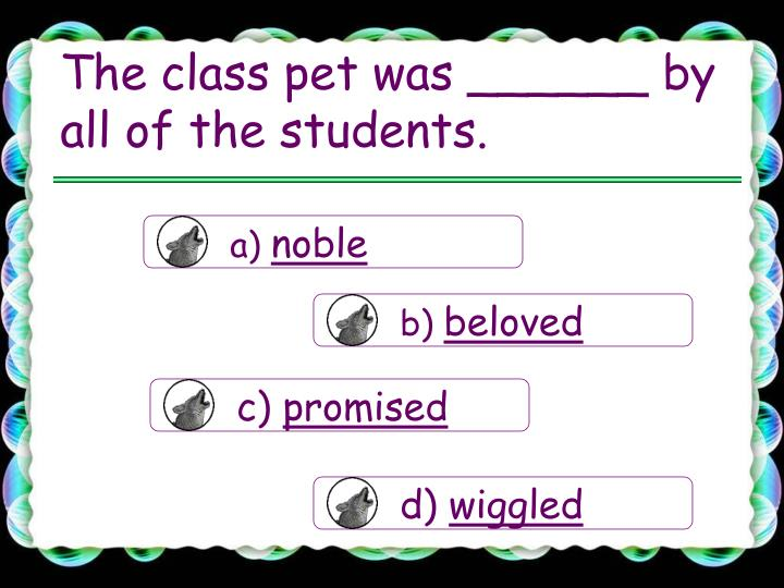 The class pet was by all of the students