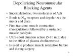 depolarizing neuromuscular blocking agents