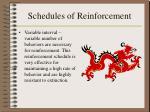 schedules of reinforcement14