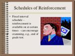 schedules of reinforcement15