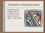 schedules of reinforcement16