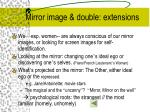 mirror image double extensions
