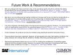 future work recommendations