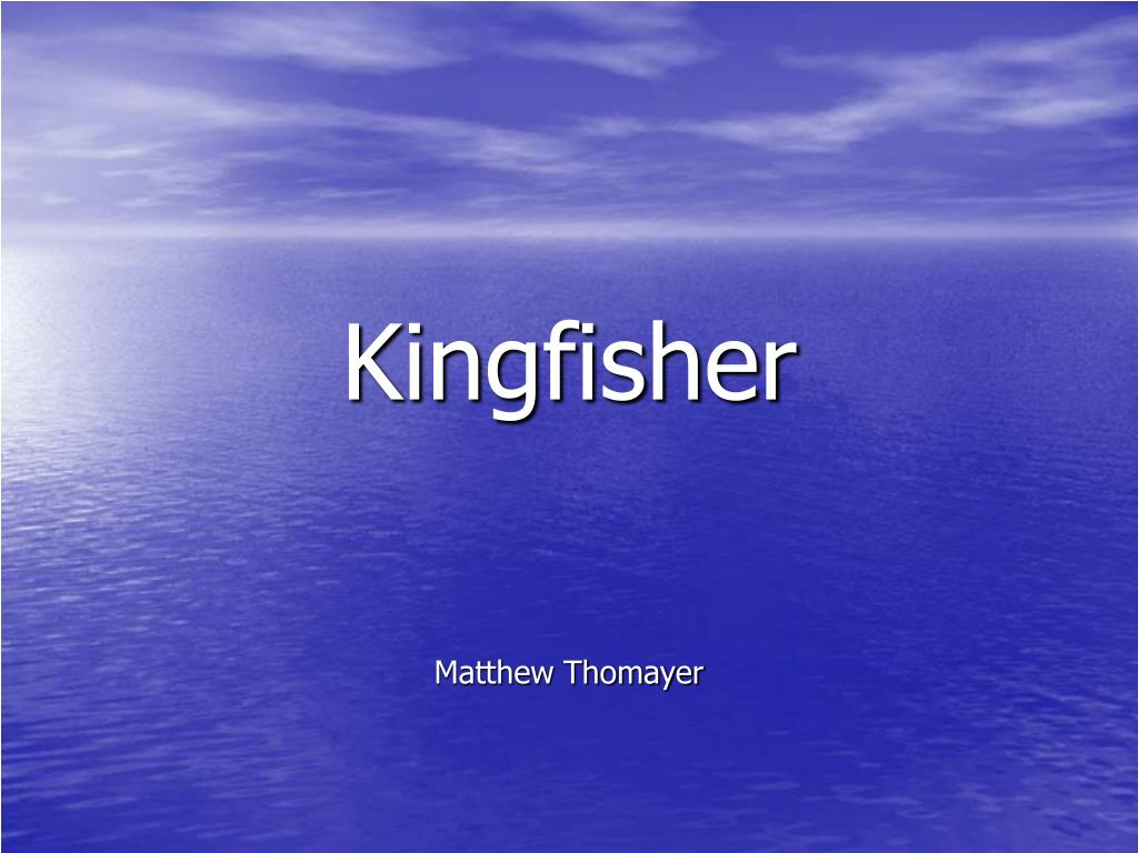 kingfisher l.