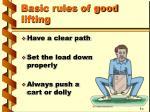 basic rules of good lifting4
