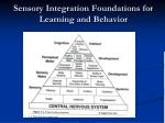 sensory integration foundations for learning and behavior