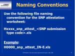 naming conventions81