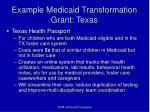 example medicaid transformation grant texas