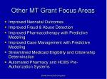other mt grant focus areas