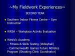 my fieldwork experiences3