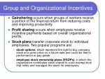 group and organizational incentives