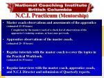 n c i practicum mentorship