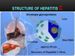 structure of hepatitis c