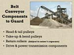 belt conveyor components to guard