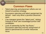common flaws