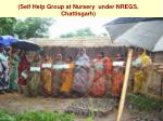 self help group at nursery under nregs chattisgarh