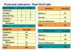protected cultivation total 59 25 lakh