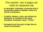 the crayfish next 4 pages are notes for dissection lab