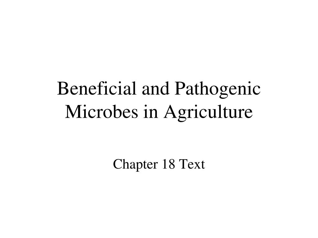 beneficial and pathogenic microbes in agriculture l.