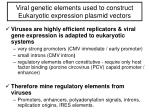 viral g enetic elements used to construct eukaryotic expression plasmid vectors