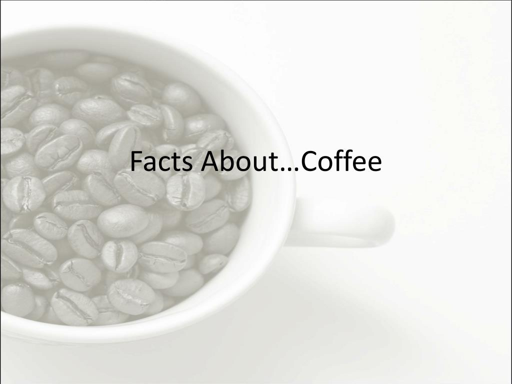 facts about coffee l.