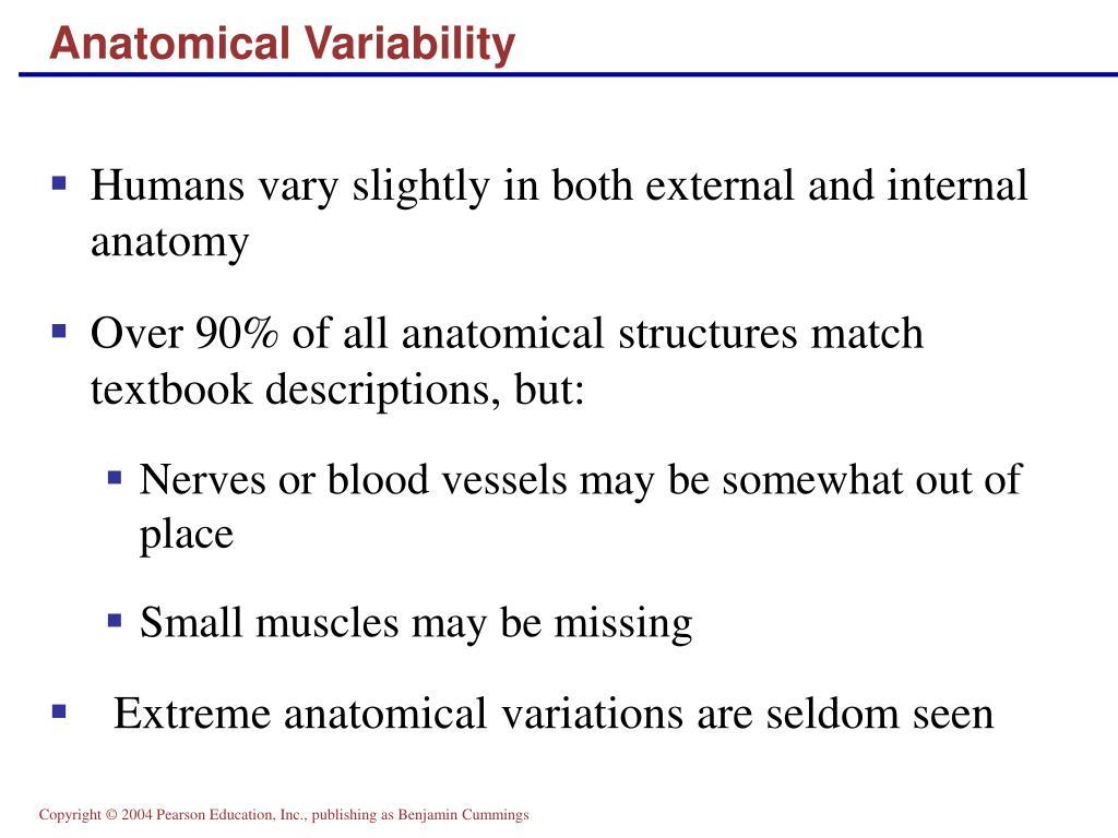 Anatomical Variability