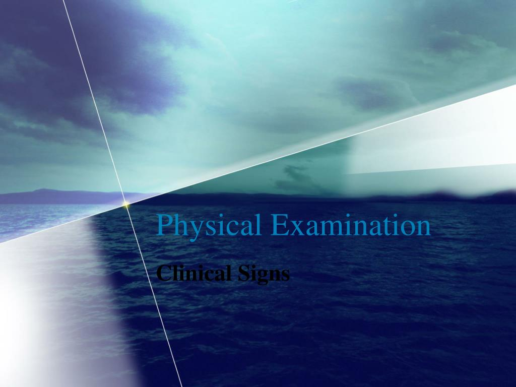 physical examination l.