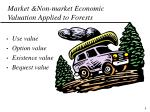 market non market economic valuation applied to forests