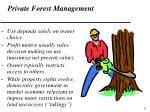 private forest management
