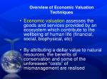overview of economic valuation techniques