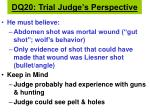 dq20 trial judge s perspective