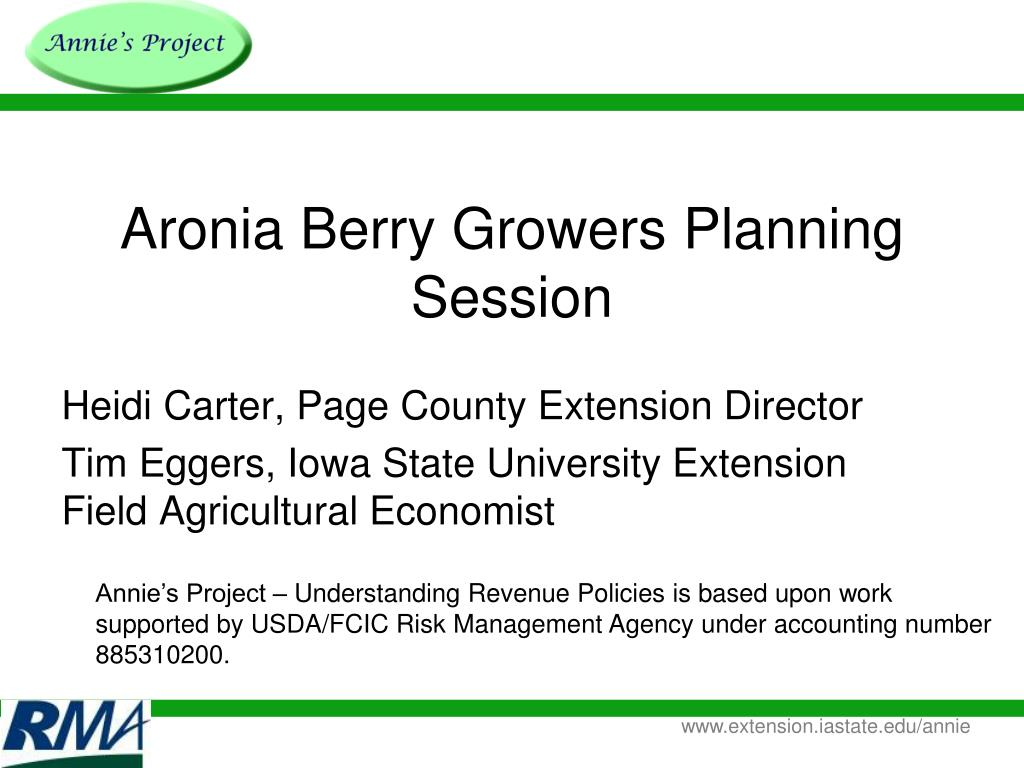 aronia berry growers planning session l.