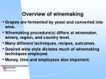overview of winemaking