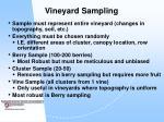 vineyard sampling