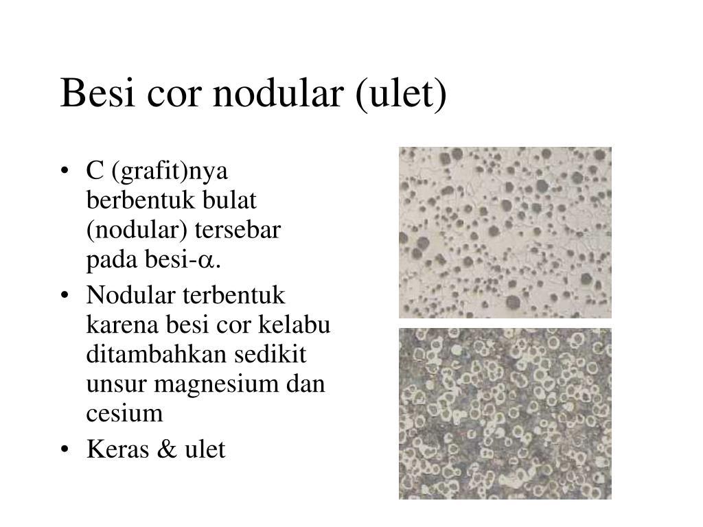 Besi cor nodular (ulet)