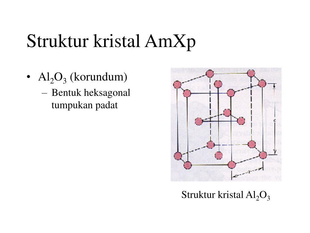 Struktur kristal AmXp