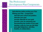 the professional development plan components