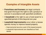 examples of intangible assets43