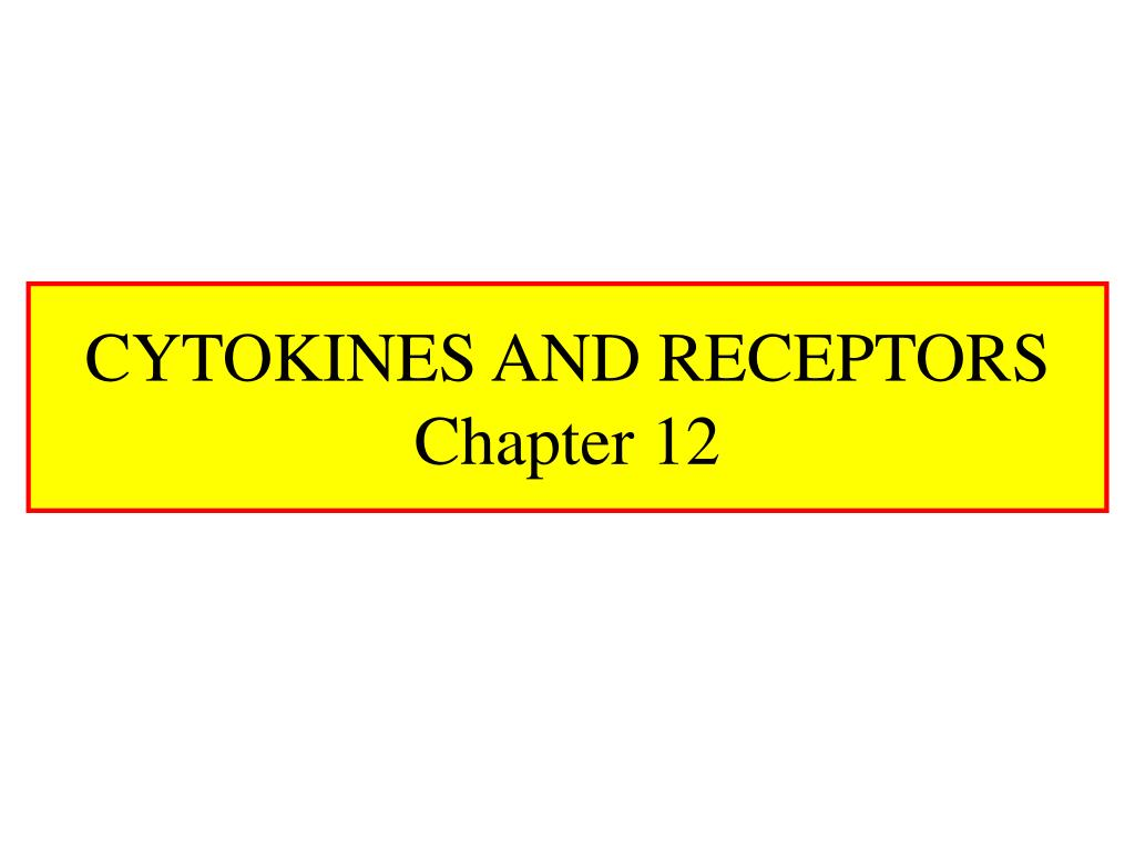 cytokines and receptors chapter 12 l.