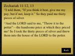 zechariah 11 12 13