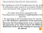 transfiguration meaning