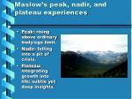maslow s peak nadir and plateau experiences