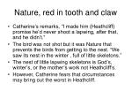 nature red in tooth and claw27