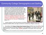 community college demographics and staffing