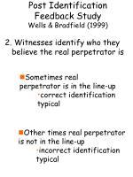 post identification feedback study wells bradfield 19995