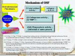 mechanism of osf