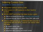 indexing custom data business data search