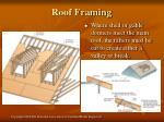 roof framing23