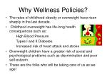 why wellness policies